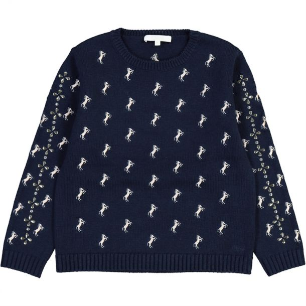 Girls Embroidered Horse Knit